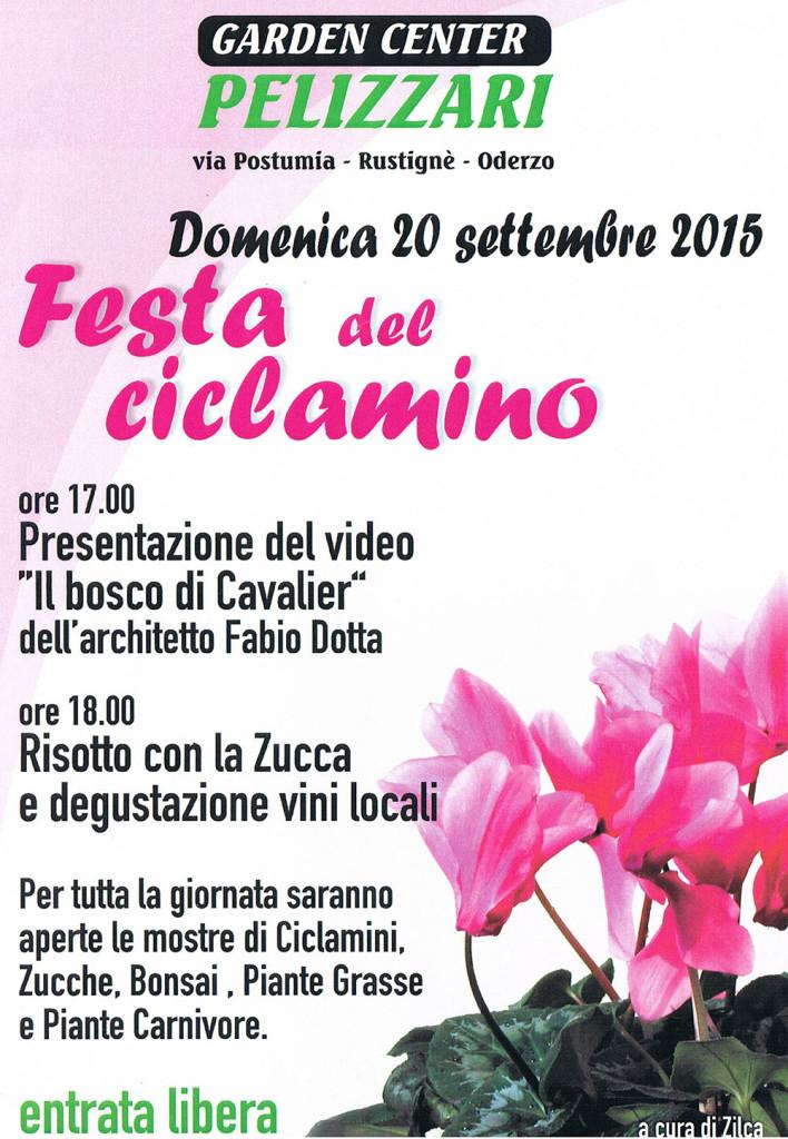 2015 FESTA DEL CICLAMINO AD ODERZO CON VIDEO DI FABIO DOTTA