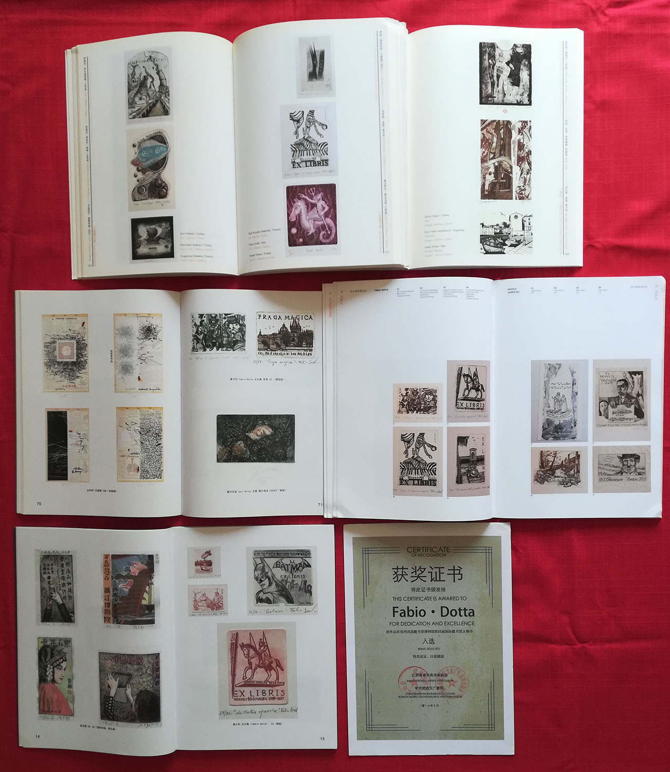 Recent publications in CHINA in Museums and University of etchings by FABIO DOTTA - Copia